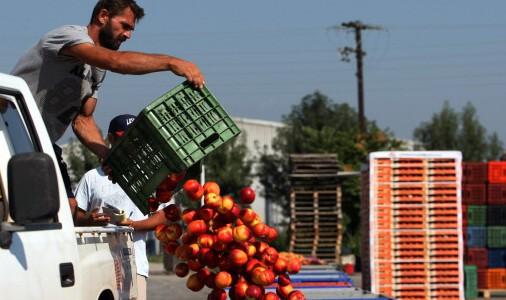 GREECE-RUSSIA-CRISIS-EU-FOOD-SANCTION